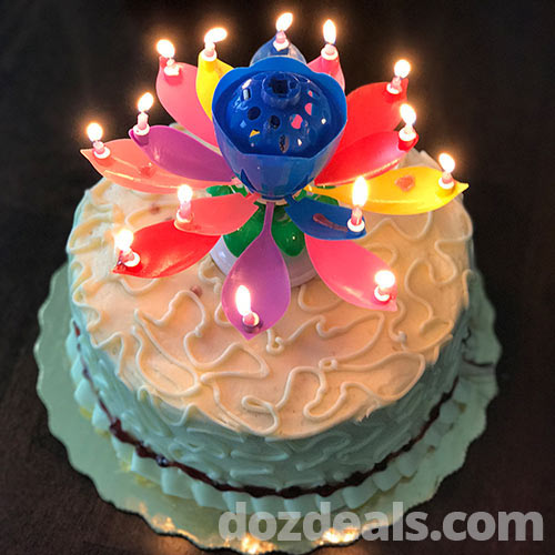 Lotus musical birthday candle on a cake lit.